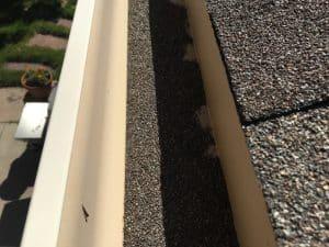 asphalt granules in house gutter
