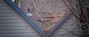 fallen tree branches on roof of house