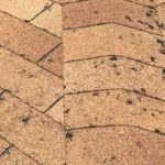 asphalt shingle roof with hail damage