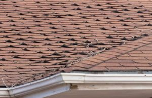 curled asphalt shingles on roof